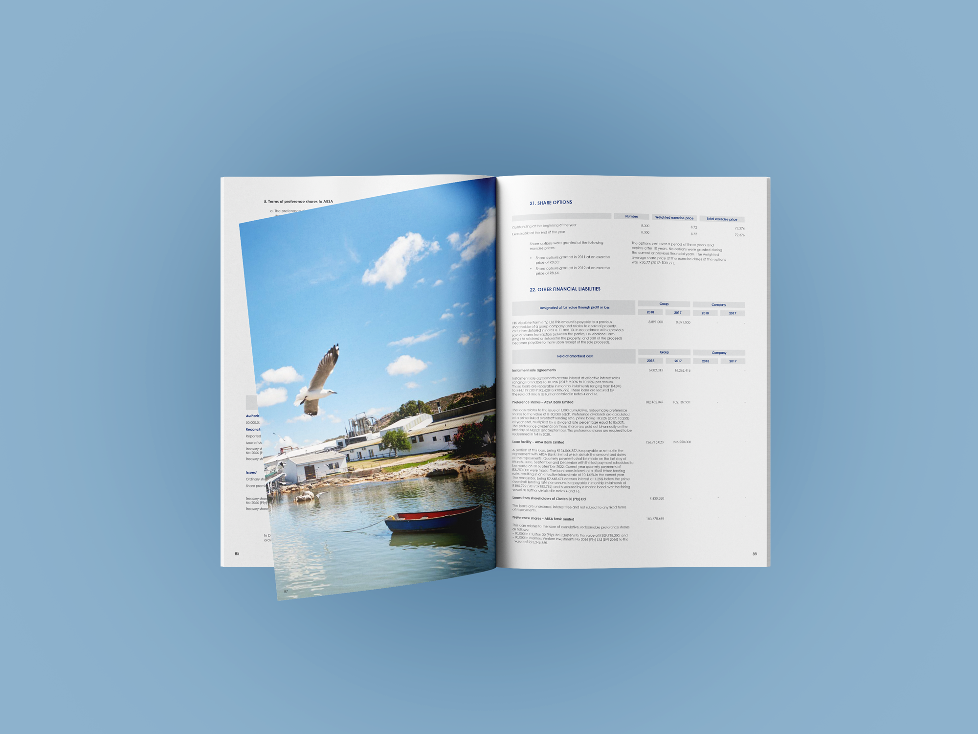 Annual Report – Terrasan